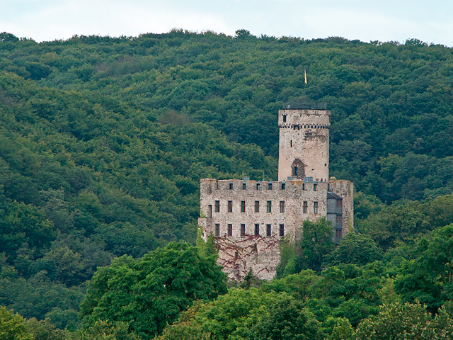 Burg Pyrmont - Roes